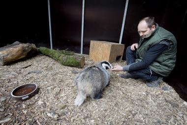 V Poděbradech otevřeli záchrannou stanici – ročně ošetří až 1500 zvířat