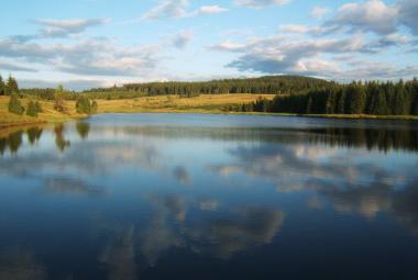 Jak zachránit zbytky pravé české divočiny? Ekologové vytipovali pět míst