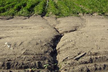 Hrozba jménem eroze: na Moravě je ohrožena už polovina půdy