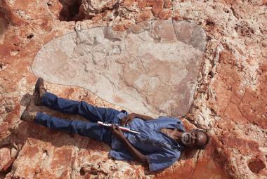 Vědci našli největší dinosauří stopu vůbec. Je velká jako dospělý muž. Komu patřila?