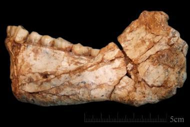První lidé vznikli o 100 000 let dříve, než vědci tušili. Pravdu ukázal nález z Maroka