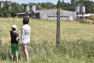 Vepřín na místě bývalého tábora Lety