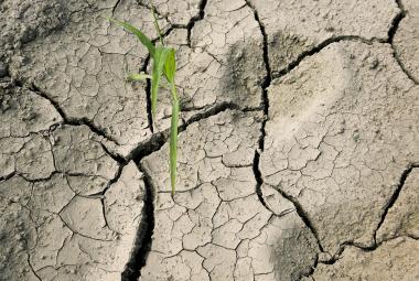 Boj se suchem i příprava nových nádrží. Experti v Ostravě debatují o vodě