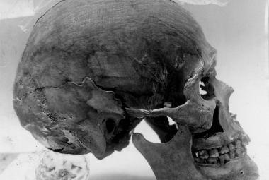 Viking pohřbený mezi Přemyslovci. Tajemný muž z Pražského hradu byl severský bojovník