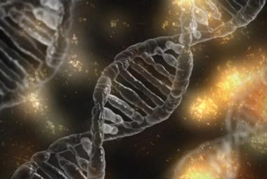 Je tu CRISPR 2 – nástroj, který umí zcela měnit lidské geny. Možnosti jsou neomezené