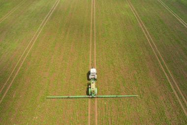 Česká zemědělská půda je plná pesticidů – včetně 10 let zakázaného toxického simazinu
