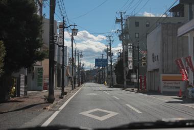 Fukušimská jaderná zóna bují životem. Přírodovědci našli kance, jeleny, opice i pávy