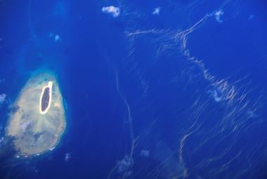 Koráli, kteří přežili klimatickou změnu, jsou mnohem odolnější vůči horku