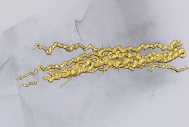 Jsou to stopy prvního pohyblivého tvora? Vědci našli v Africe otisky staré 2,1 miliardy let