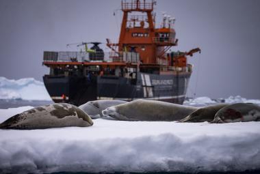 Vědci budou vrtat do minulosti Antarktidy. Chtějí pochopit klimatické změny