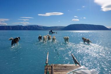 Tání ledu v Grónsku vloni přispělo ke zvýšení hladiny oceánů ze 40 procent