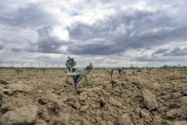 Dvacet deštivých dní po suchém dubnu nestačí. Vody je pořád málo