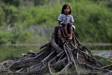 Svět nesplnil ani jeden z cílů ochrany přírody, které si předsevzal, kritizuje zpráva OSN
