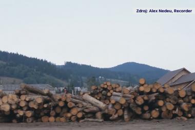 V Rumunsku mizí zelené plíce Evropy, boj s nelegálními těžaři stál život už čtyři lesníky