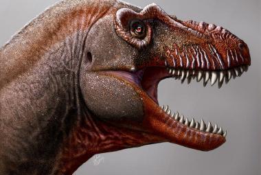 Jako sama smrt. V Kanadě objevili neznámý druh velkého tyranosaura