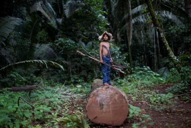 Chráněnou amazonskou půdu nabízeli na Facebooku. Brazilský soud případ vyšetřuje