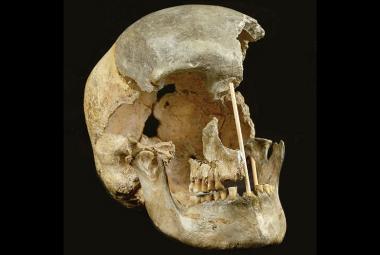 První moderní lidé napoprvé neuspěli v kolonizaci Evropy, ukazuje nejstarší lebka z Česka
