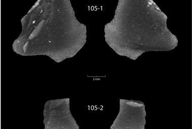 Huronské jezero vydalo prastaré obsidiánové artefakty. Vypráví neznámý příběh pravěké Ameriky