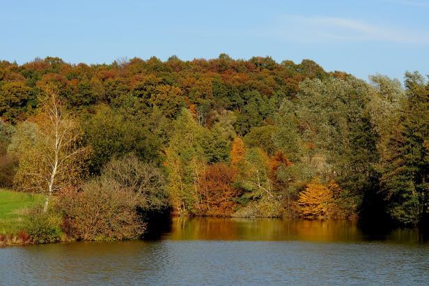 Suché léto přineslo zájem o rybníky. Obce je chtějí odbahnit i stavět nové