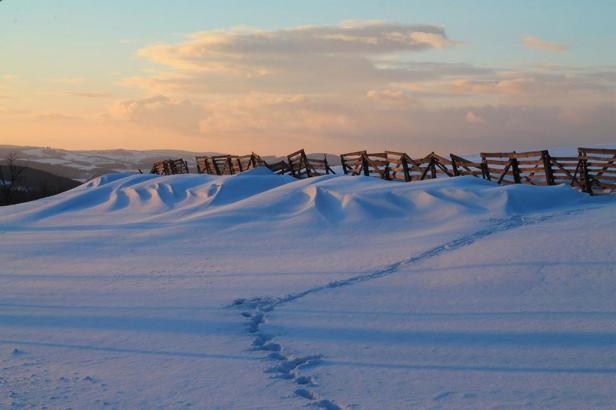 Předjaří se odkládá. Jižní půlku republiky zasype sníh, mrazy se čekají až do konce února