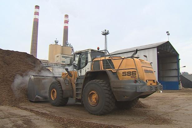 Biomasa v elektrárnách stále častěji nahrazuje uhlí. Českými premianty jsou kotle v Hodoníně