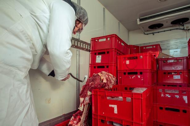 Z polského hovězího, ve kterém se našla salmonela, se do pokrmů zpracovalo přes sto kilogramů. Šlo i do škol