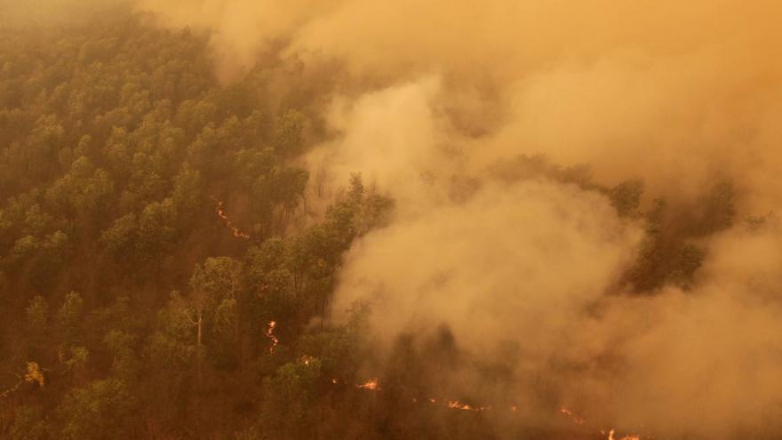 Video Klimatolog o požárech v Indonésii: Přednost před pralesy měly ekonomické zájmy