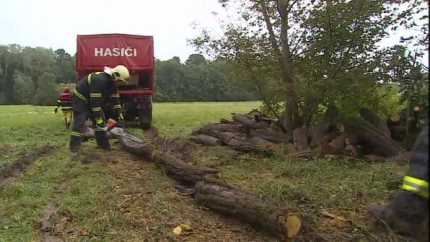 Video NO COMMENT: Hasiči čistí nestabilní svah v Bulharech od dřevin