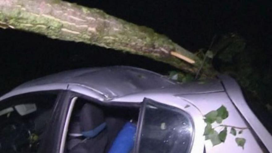 Video No comment: Následky bouřek v Německu