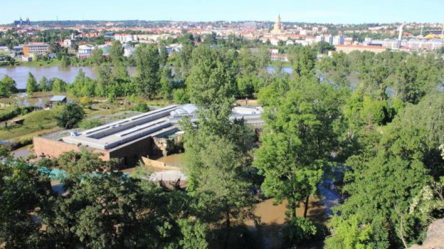 Video Loňské povodně způsobily v pražské zoo škody za 52 milionů