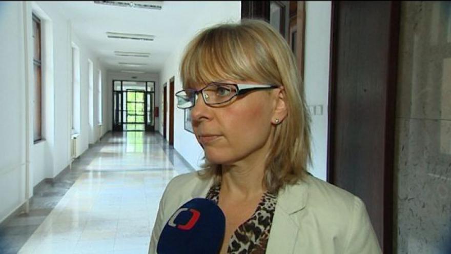 Video Klub ČSSD vyzval náměstkyni Piperkovou a radního Palyzu k rezignaci do 24 hodin