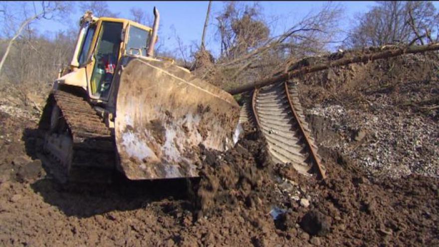 Video Dřevorubci začali s kácením stovek stromů