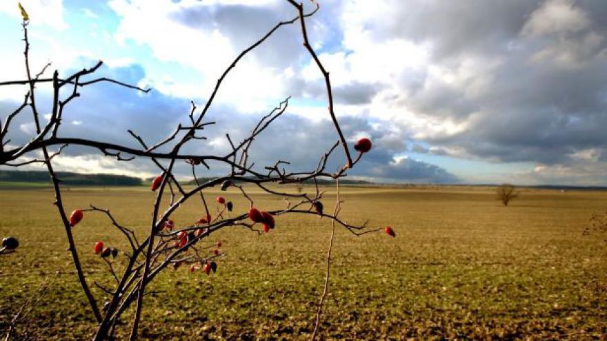 Video Zemědělce trápí sucho