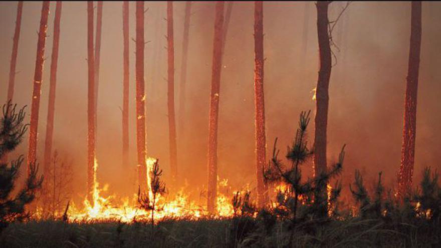 Video Podívejte se na záběry z místa požáru