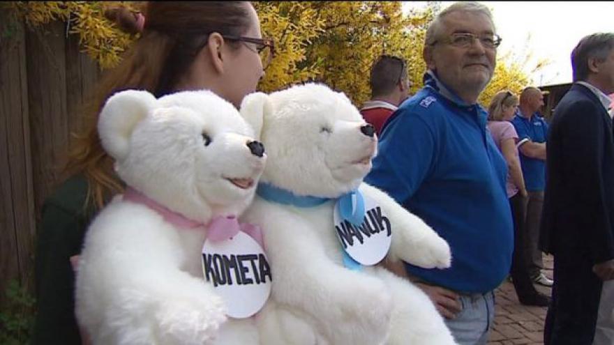 Video Brněnská medvíďata už mají svá jména