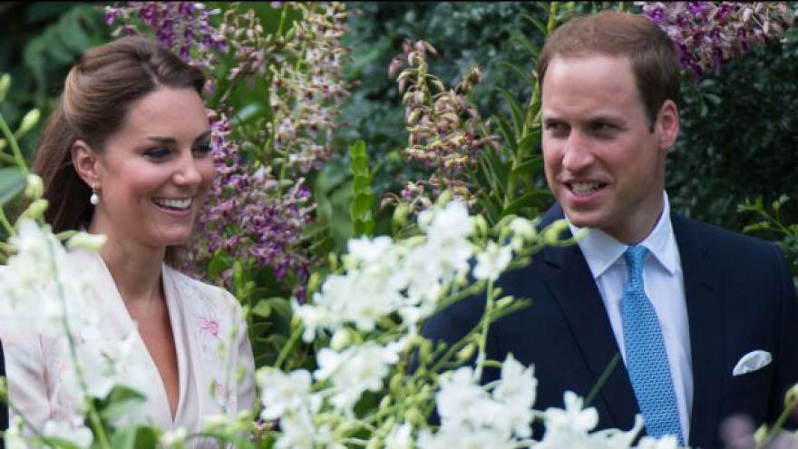 Video Britské obchody stagnují, pomoci by mohlo těhotenství vévodkyně Kate