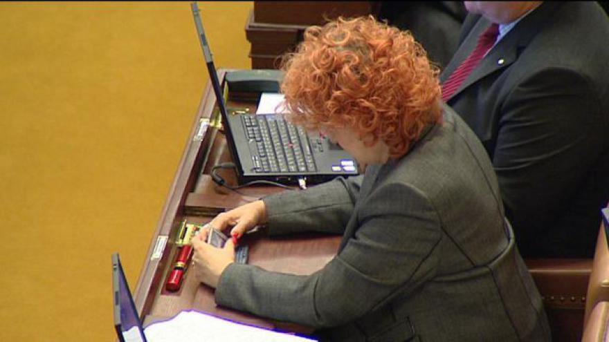 Video Sněmovna řeší, zda vydat Parkanovou