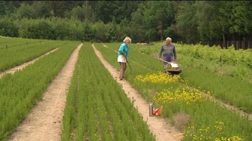 Video Události: Rekordně suchý květen