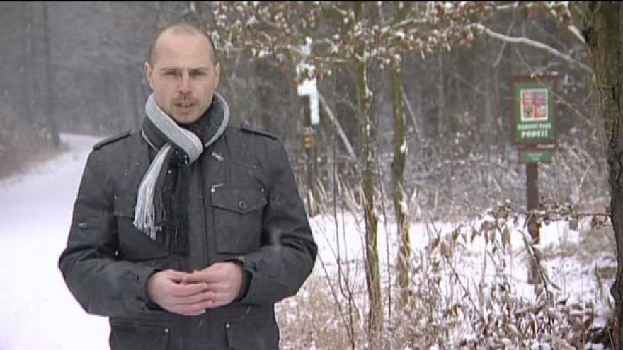 Video Reportáž Michala Šebely