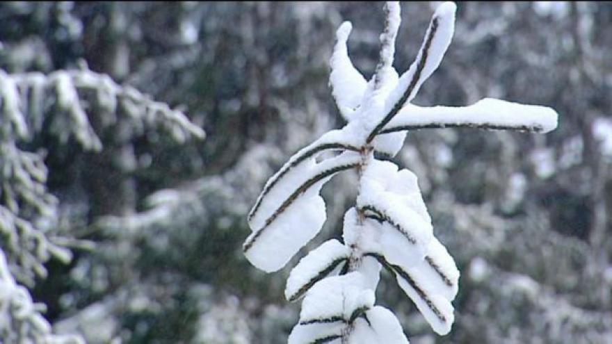 Video Nedělní počasí na horách