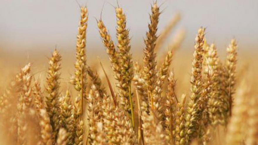 Video Návštěva německé ministryně zemědělství