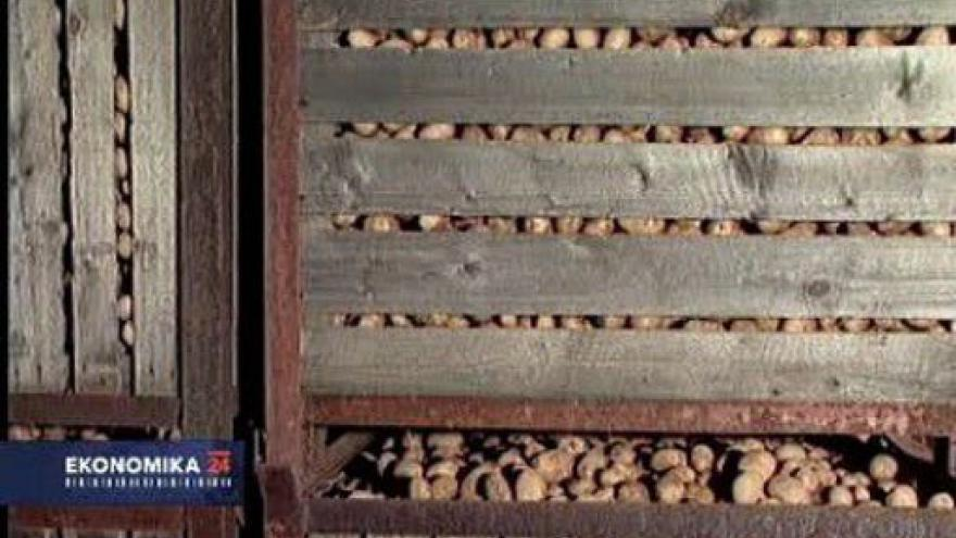 Video Ekonomika ČT24: Škrty v zemědělství