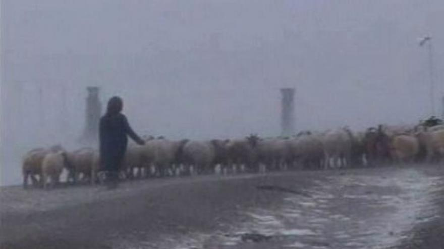 Video Vladimír Weigert o mrazech v Mongolsku