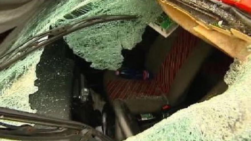 Video Mrtvých ze silnic za rok 2009 zatím 826
