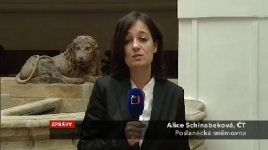Video Vstup Alice Schinabekové