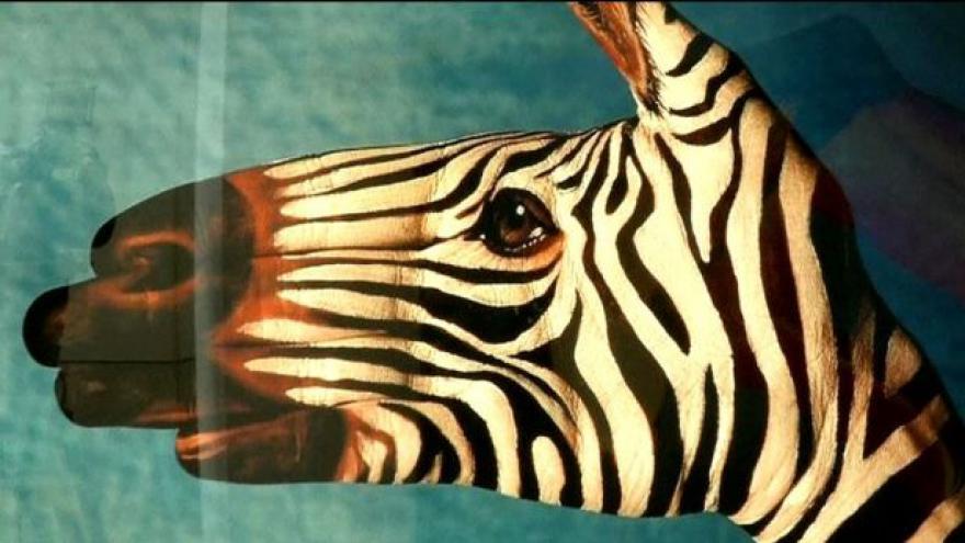 Video Guido Daniele proměňuje ruce ve zvířata