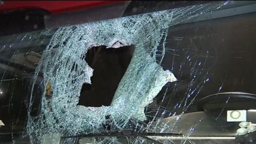 Video Policie dopadla muže, který házel polena na dálnici