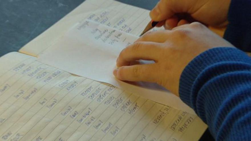 Video Školský zákon nyní dostanou senátoři
