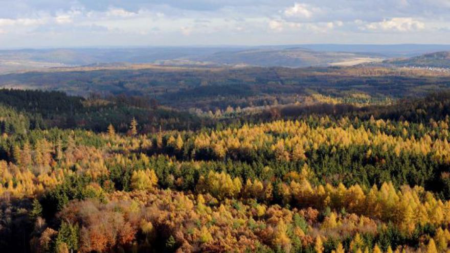 Video Přírodovědec: Lidé se nechtějí vzdát vlastní expanze na úkor přírody