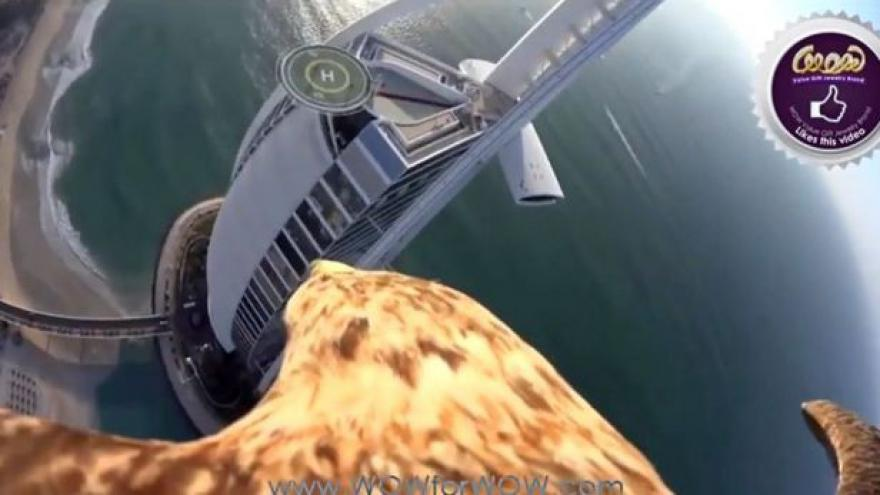 Video Dubaj pohledem orla - let z hotelu Burdž al-Arab